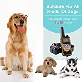 EtekCollar Dog Training Collar, Rechargeable and Waterproof,800 Yards Range Remote with Beep, Vibration and Shock Electronic Collar for Puppy,Small,Medium and Large Dog