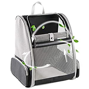 Texsens Pet Backpack Carrier for Small Cats Dogs | Ventilated Design, Safety Straps, Buckle Support, Collapsible…