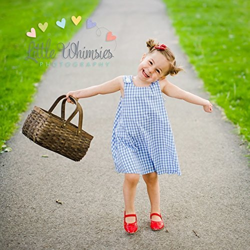 baby girls dorothy wizard of oz halloween costume toddler dress pinafore sundress