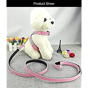 Newtensina Fashion 3pcs Puppy Harness and Leash Set Cute Girl Bling Diamante Dog Harness and Leash for Small Dogs