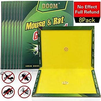 Amazon Com Kensizer 5 Pack Mouse Rat Glue Trap Extra