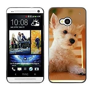 Be Good Phone Accessory // Dura Cáscara cubierta Protectora Caso Carcasa Funda de Protección para HTC One M7 // Australian Terrier Cairn Norfolk West Dog