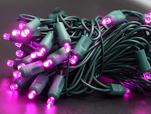 5Mm Purple Led Lights in US - 5