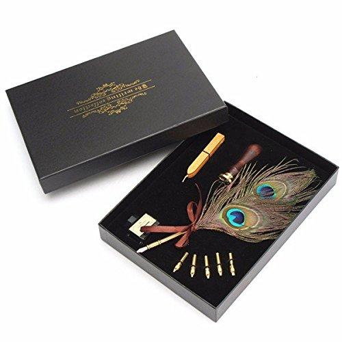 DIP set penna e inchiostro, Faway antico Peacock Feather Quill DIP penna con punte 5 pezzi penna e inchiostro bottiglia e DIP set penna e inchiostro, Faway sigillo di cera set