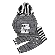 Younger star Toddler Infant Baby Boys Dinosaur Long Sleeve Hoodie Tops Sweatsuit Pants Outfit Set, Gray, 12-18Months (Tag Size 90)