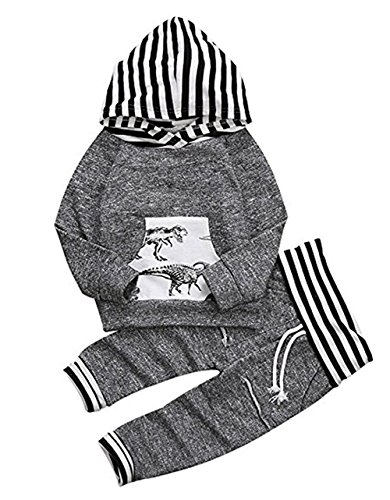 Younger Star Toddler Infant Baby Boys Dinosaur Long Sleeve Hoodie Tops Sweatsuit Pants Outfit Set  Gray  12 18Months  90