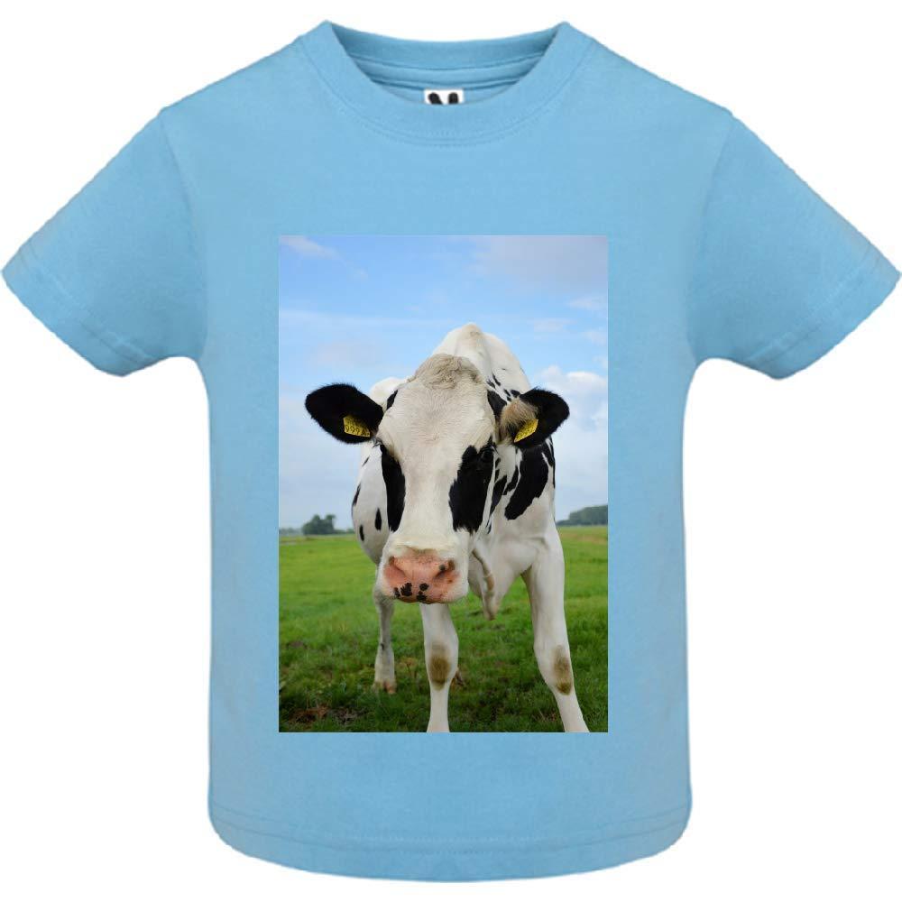access-mobile-ile-de-re.fr T-Shirt - Manche Courte - Col Rond - Vache dans Le pr 1 - Bébé Garçon - Bleu - 6mois