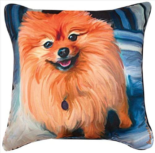 Manual Blue Pom Pomeranian Paws and Whiskers Decorative Square Pillow, 18-Inch