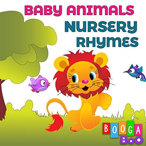 Animal Finger Family Song -