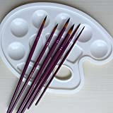 12 Pieces Art Paint Brushes Set with A Paint Tray