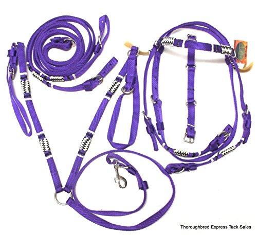 pony harness - 7