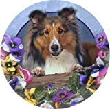 Set of Four Shetland Sheepdog Ambiance Coasters - Style vpa18