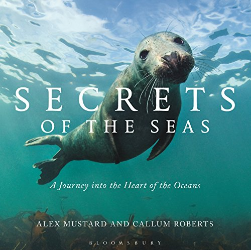 Download PDF Secrets of the Seas - A Journey into the Heart of the Oceans
