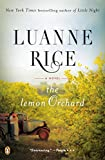 The Lemon Orchard: A Novel