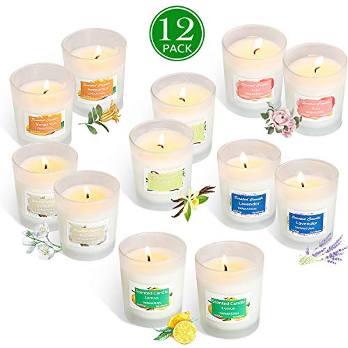 YIIA Scented Candles 12 Pack Gift Set, Aromatherapy Set of Fragrance Soy Wax, 12-15 Hours Burn Time Per Cup, 12 x 2 Oz for Stress Relief, Mother's Day Father's Day Hostess Gift Set