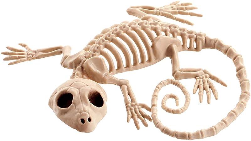 esqueleto de lagarto