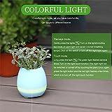 Womail Smart Bluetooth Flower Plant Finger Music Pot Home Office Decoration (Blue)