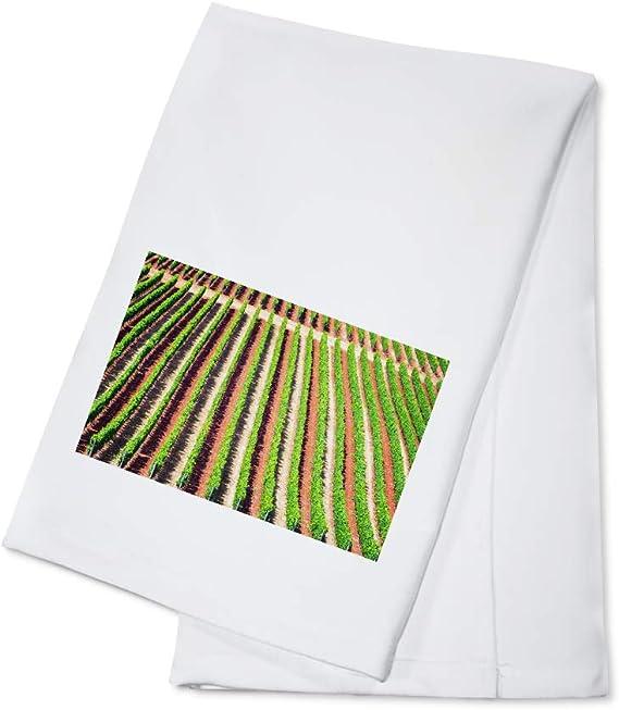 Oregon - Rows of Grape Vines 9006235 (100% Cotton Kitchen Towel)