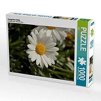 Margeriten Blüte 1000 Teile Puzzle Hoch Amazonde Spielzeug