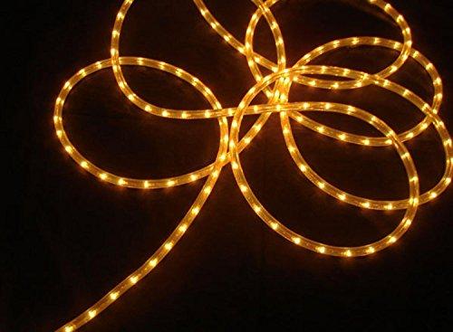 Indoor Outdoor Christmas Light Decoration