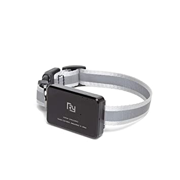 QNMM Gato Rastreador de GPS para Mascotas Collar Inteligente de Actividad Monitor de Seguimiento: Amazon.es: Hogar