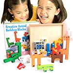 Kids Puzzles Toys in USA