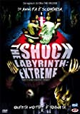 The Shock Labyrinth Extreme [Italian Edition] by misako renbutsu