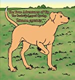 The True Adventures of Tip the Catahoula-Leopard Cowdog, Barbara Gourley, 1463423160