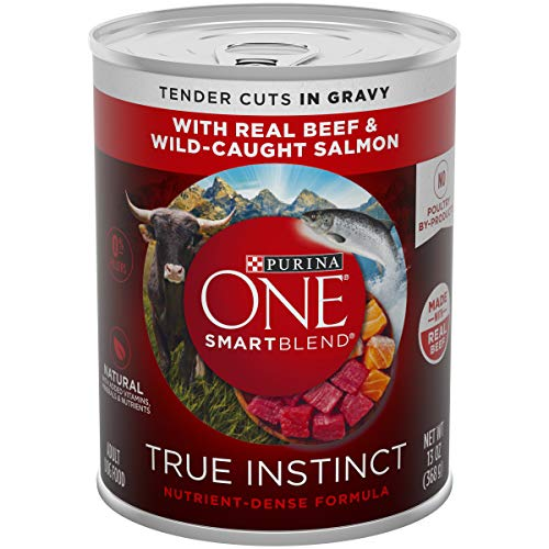 Purina ONE Natural Gravy Wet Dog Food; SmartBlend True Instinct Tender Cuts With Real Beef & Salmon - 12 each - 13 oz. Can
