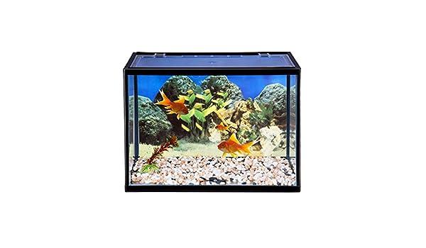 Beshomethings Set de arranque de acuario de cristal de 18 litros con ...