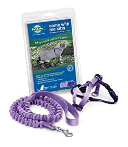 PetSafe Come With Me Kitty Harness and Bungee Leash, Small, Lilac