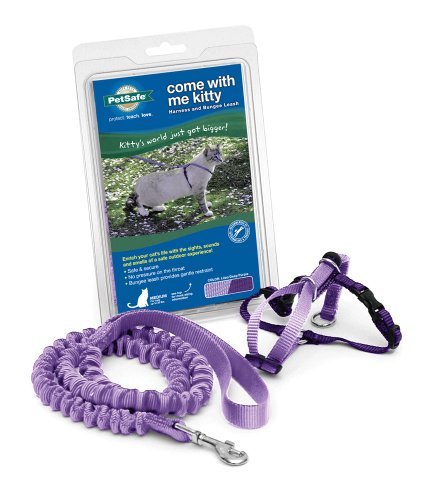 PetSafe Come With Me Kitty Harness and Bungee Leash, Harness for Cats, Small, Lilac/Bright Purple
