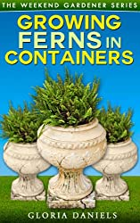 Growing Ferns in Containers (The Weekend Gardener Book 3) (English Edition)