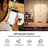 Single Pole Treatlife Smart Light Switch, 4