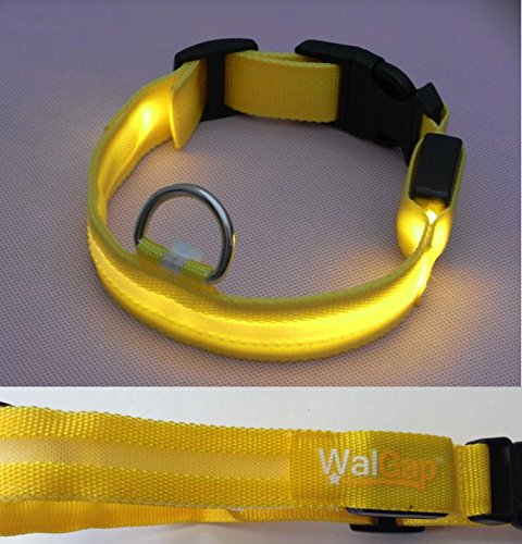 LED Flashing Lights Dog Collar Nylon (Yellow, Large)