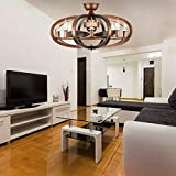 Vintage Cage Ceiling Fan with 3 Wood Blades Mute Fan Chandelier 28″ Remote Control for Decorating Bedroom Living Room Kitchen,Akronfire For Sale