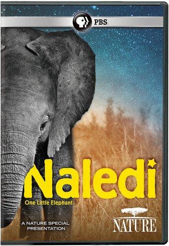 NATURE: Naledi: One Little Elephant - Dvd Elephant Show