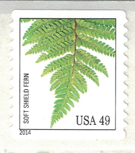 Strips of 10 Ferns USPS Forever Postage Stamps featuring a close up photograph of five different species of fern (10 Strips of 10 Stamps) Photo #5