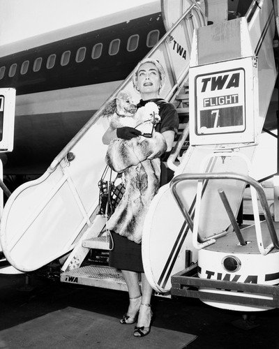 Joan Crawford on TWA vintage airplane holding pet dog 8x10 HD Aluminum Wall Art