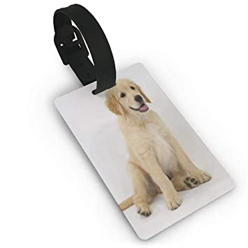 Amazoncom Luggage Tags Cute Golden Retriever Puppies Travel Name