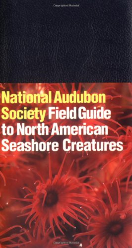 National Audubon Society Field Guide to North American Seashore Creatures (Audubon Society Field Guide) - Book  of the National Audubon Society Field Guides