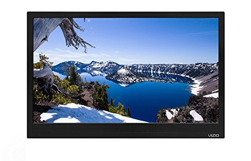 Vizio D24HN-E1 24-inch HDTV LED 720p (NO STAND) (Certified Refurbished) (Vizio 24 Inch Led Tv)