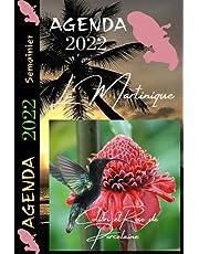 Agenda 2022 Martinique Colibri: Semainier Professionnel ou personnel / Journal de bord 2 pages par semaine / Format pratique 6x9po / 135 pages / Bilans et objectifs mensuels / Voyage