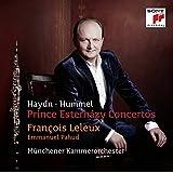 Prince Esterhazy Concertos [Import allemand]