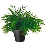 IKEA FEJKA - Artificial potted plant, herbs, assorted - 10 cm by Ikea