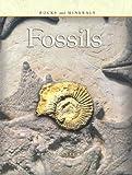 Fossils, Melissa Stewart, 1403400911