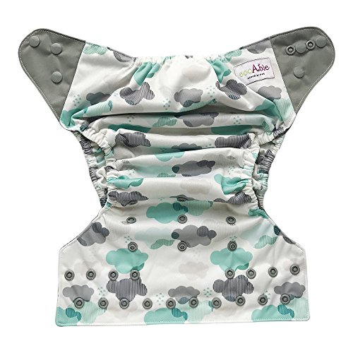 EcoAble Baby All-In-One AIO Cloth Diaper w/Pocket + Charcoal Bamboo Insert, Size 10-35Lb (Clouds)