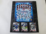 CHICAGO CUBS 2016 WORLD SERIES CHAMPIONS PHOTO & CARD PLAQUE
