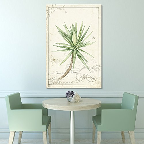 Vintage Style Tropical Plant with Thin and Long Leaves