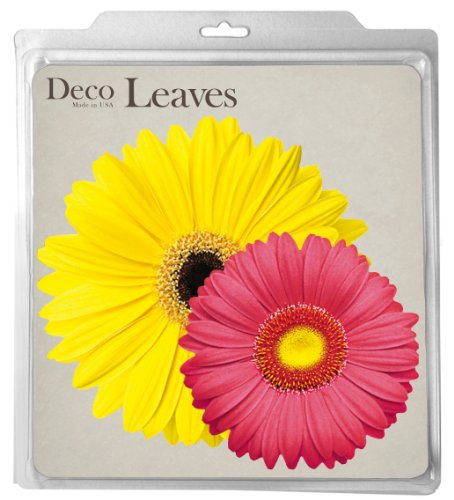 EuroQuest Imports Daisies Parchment Package product image